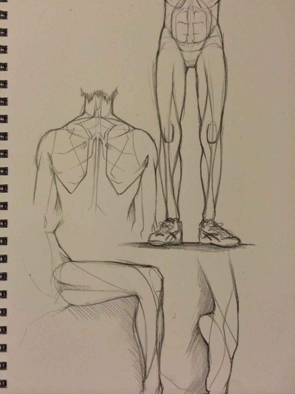 Anatomy practice – Marty South